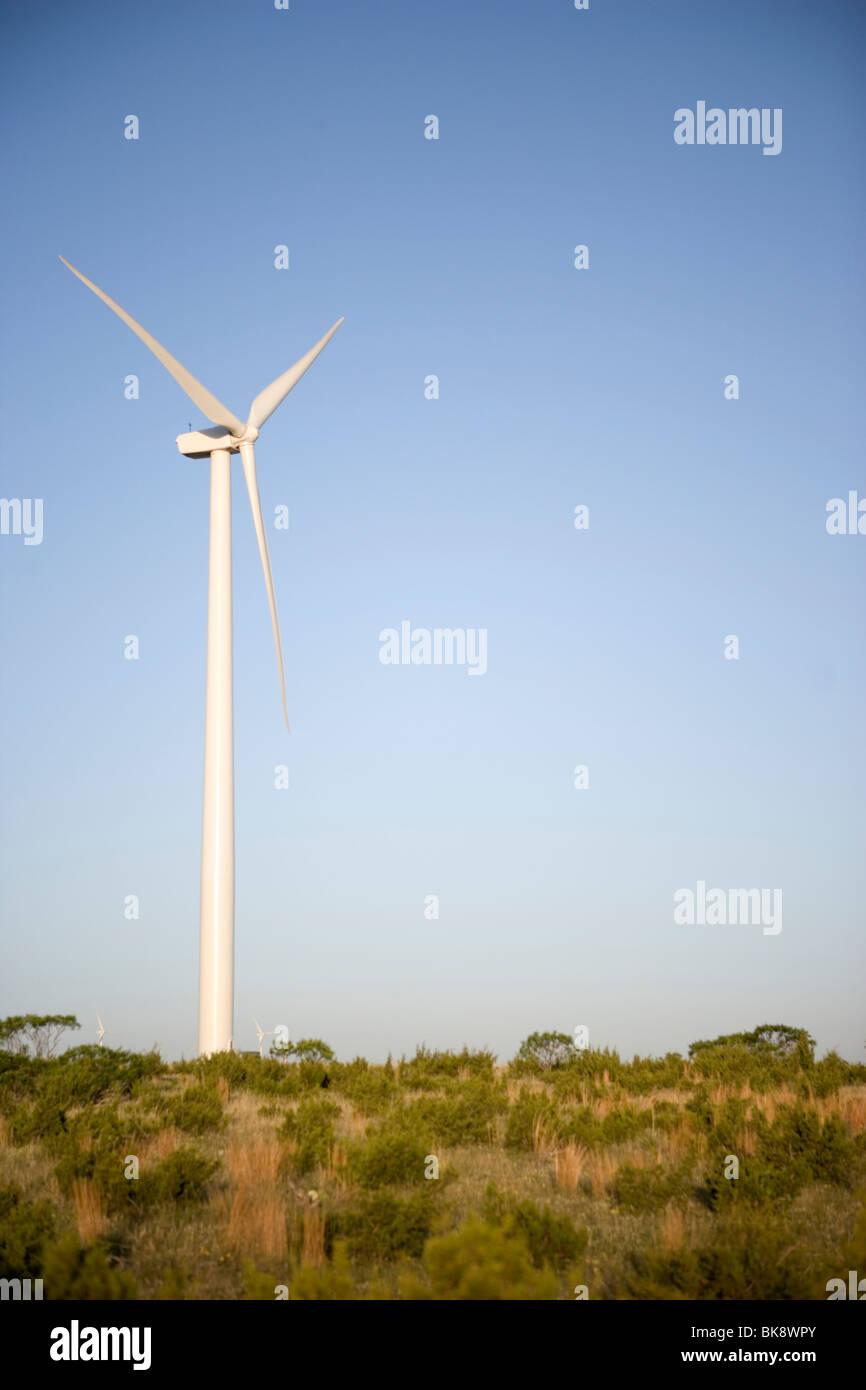 USA, Texas, Roscoe County, West Texas Windturbine Stockbild