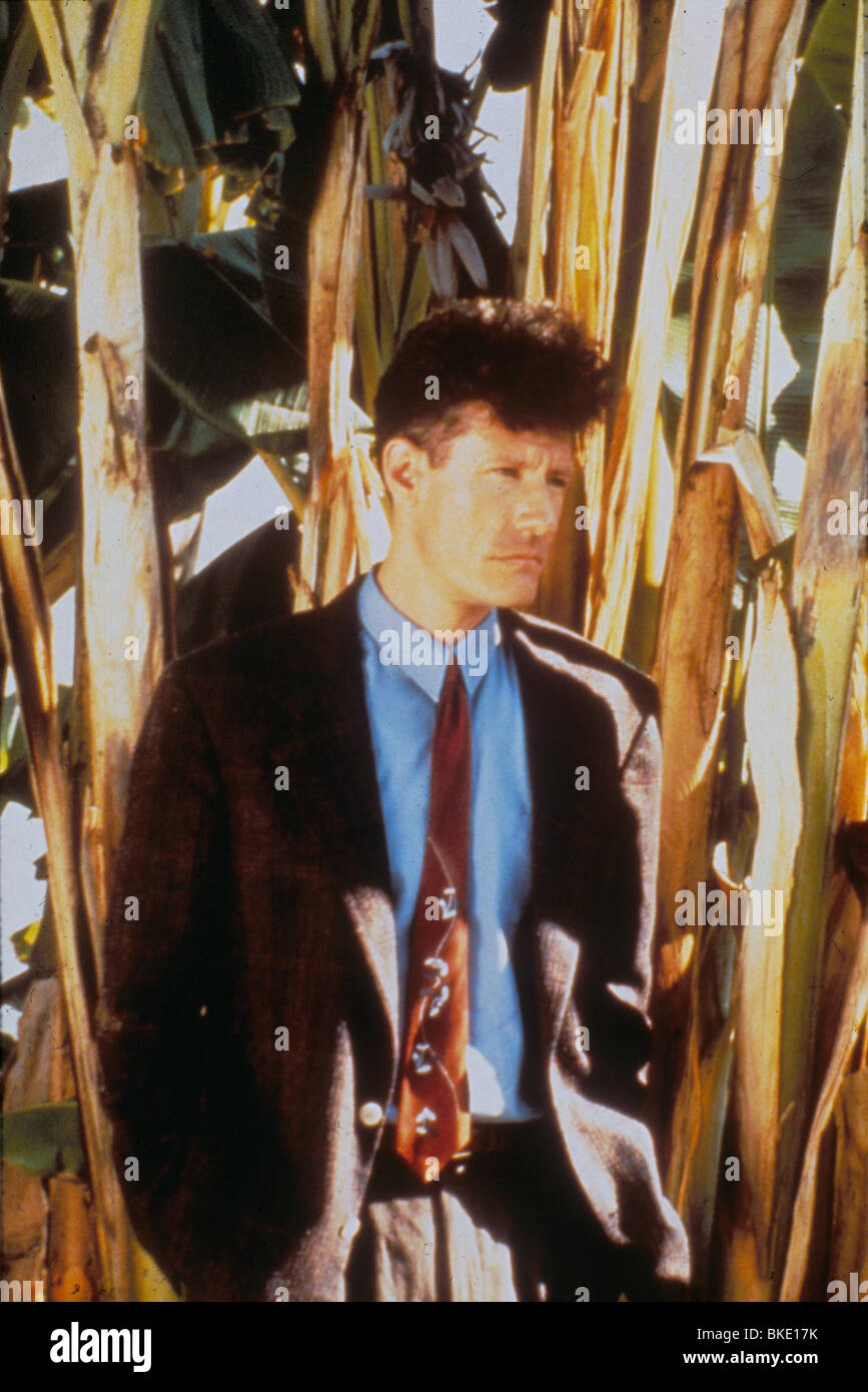 DIE SPIELER -1991 LYLE LOVETT Stockfoto