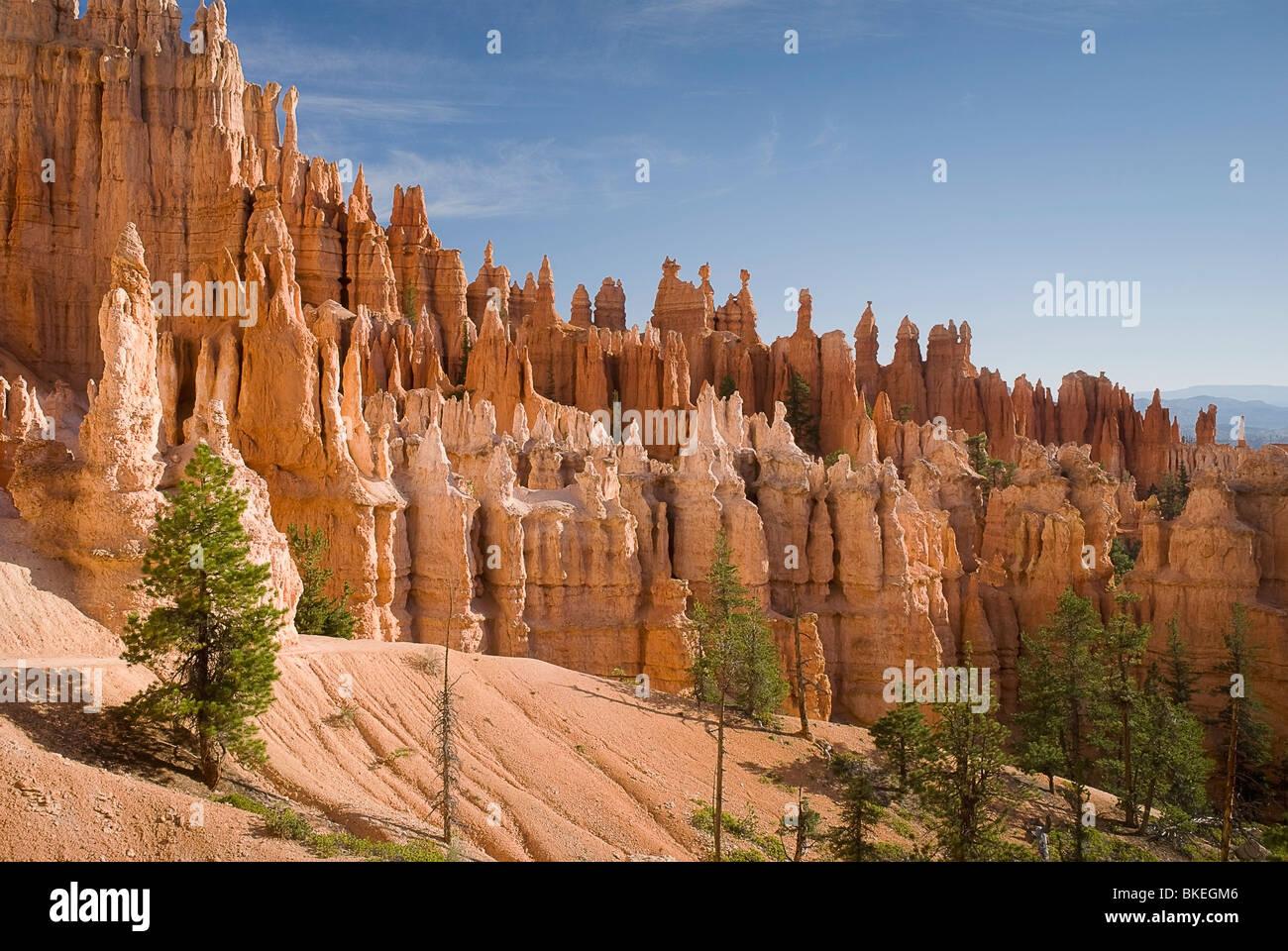 Utah, Vereinigte Staaten von Amerika; Bryce Canyon Nationalpark Stockbild