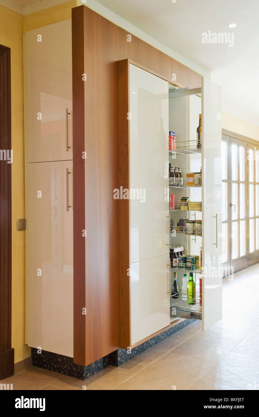 Ausziehbare Regale in großer Kühlschrank im eingebauten ...