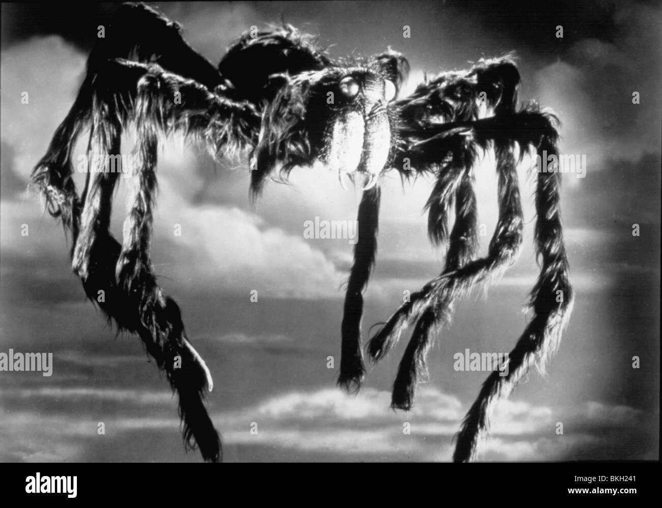 VOGELSPINNE-1955 Stockbild