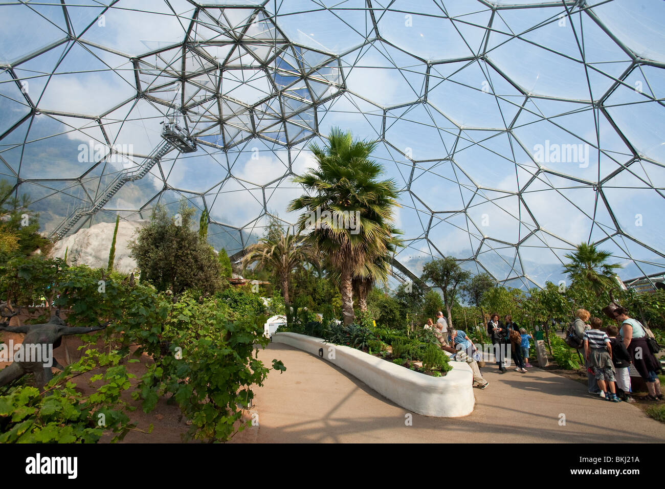 Interior Mediterranean Biome Eden Project Stockfotos & Interior ...
