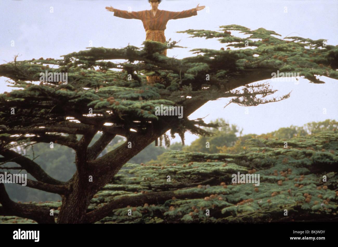 PRINZESSIN CARABOO (1994) PHOEBE CATES PRCR 040 Stockbild