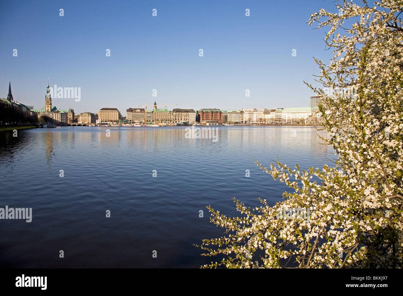 Frühling Sonne auf der Binnenalster (Innen Alster See) in der Stadt Hamburg, Deutschland. Stockbild