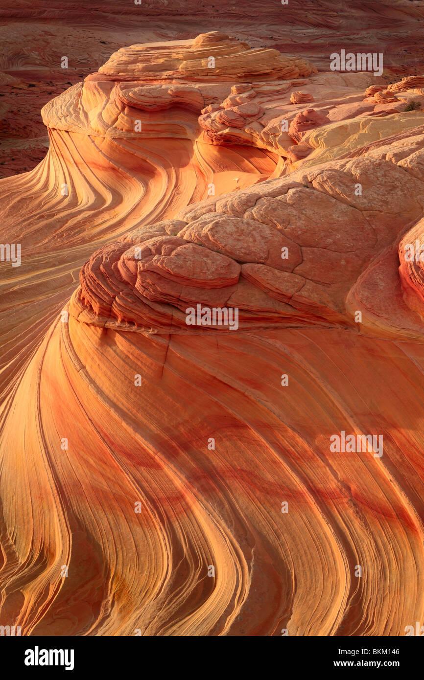 Abstrakte Muster auf erodierten Sandstein-Formationen im Vermilion Cliffs National Monument Stockbild