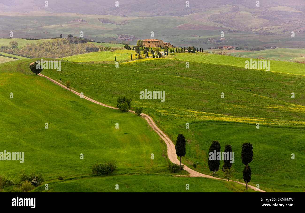 Landschaft in der Nähe von Pienza, Toskana, Italien Stockbild