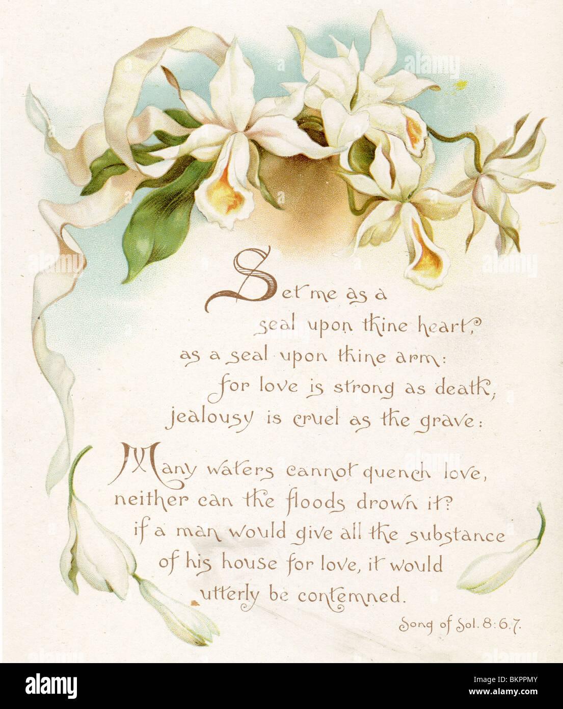 Hochzeit Gedicht Und Weißen Orchideen Stockfoto Bild