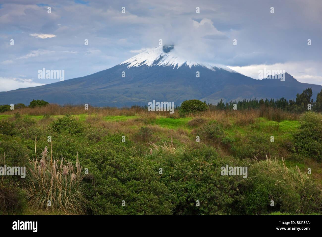 Ecuador, den schneebedeckten Vulkan Cotopaxi, eines der höchsten in der Welt mit 5.897 Metern. Stockbild