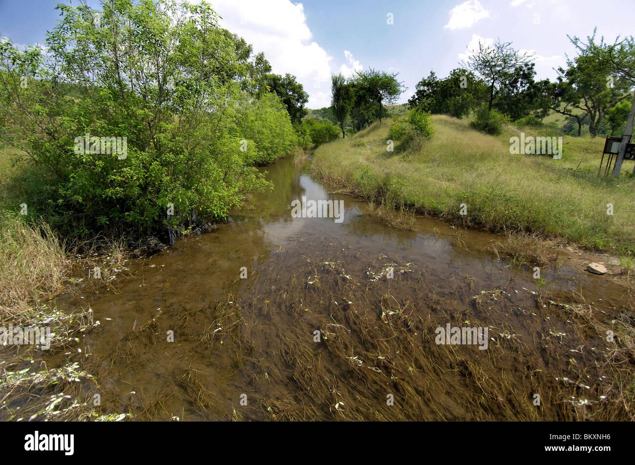 Versickern von Wasser aus dem Tank für die Bewässerung am Ralegan Siddhi nahe Pune; Maharashtra; Indien Stockfoto