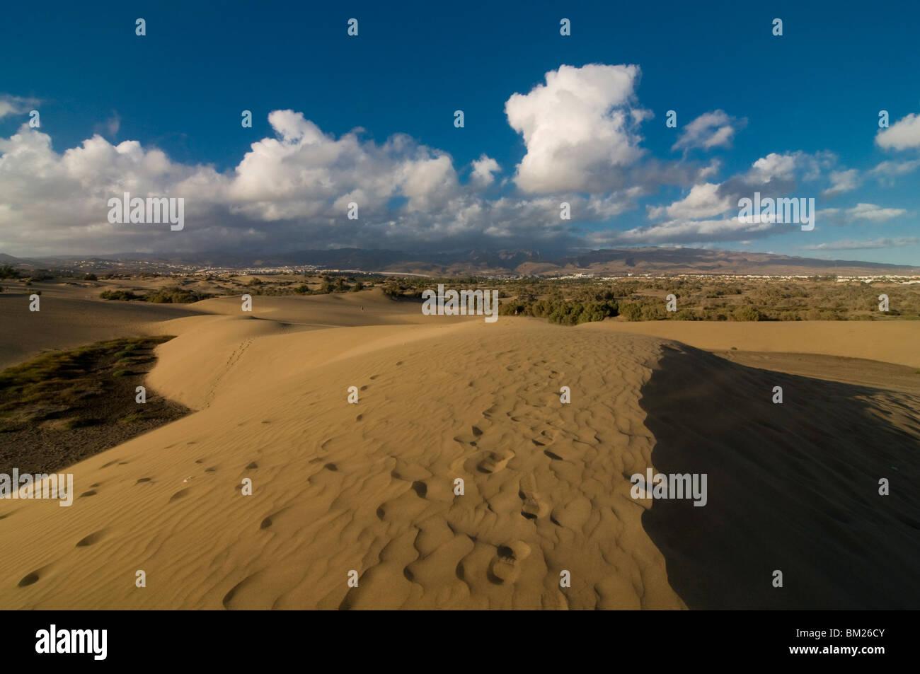 Die berühmten Dünen von Maspalomas, Gran Canaria, Kanarische Inseln, Spanien, Europa Stockfoto