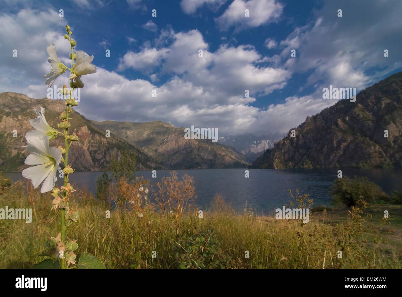 Sary-Chelek UNESCO Biosphäre Reservoir, Kirgisien, Zentralasien Stockbild