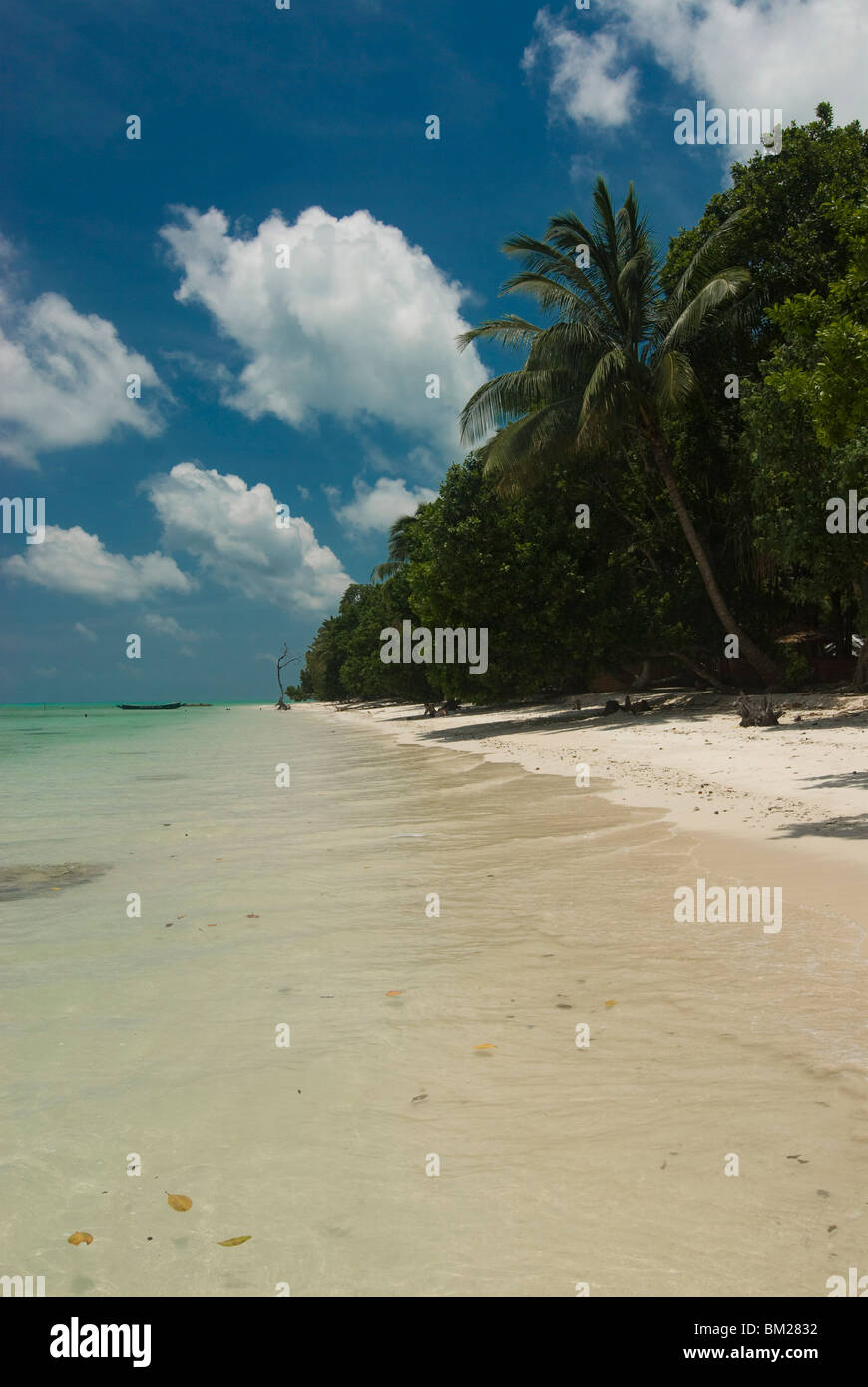 Silber Sandstrand mit türkisfarbenem Meer, Havelock Island, Andamanen, Indien, Indischer Ozean, Asien Stockbild