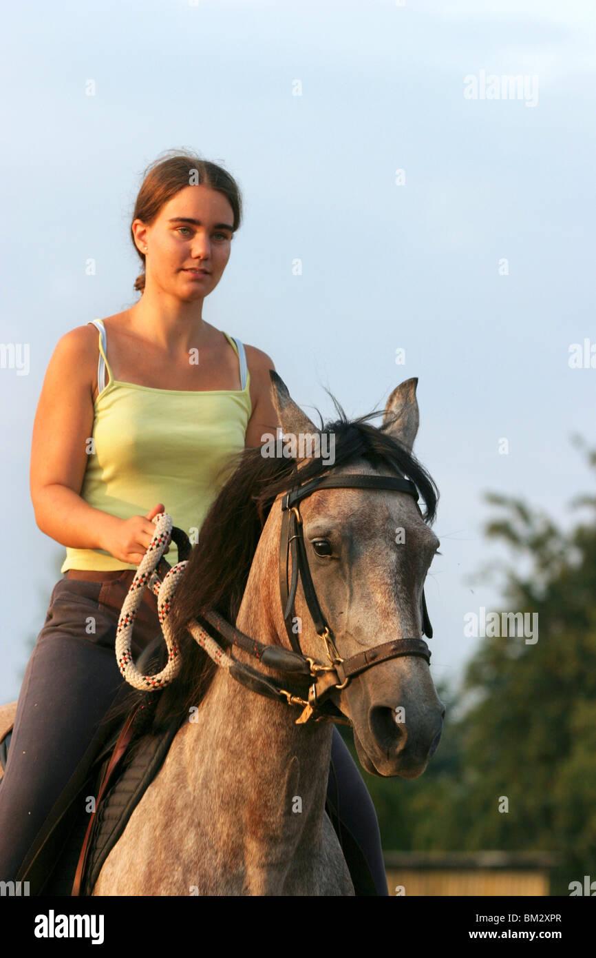 pferd und reiter  pferd und reiterin stockfotografie  alamy