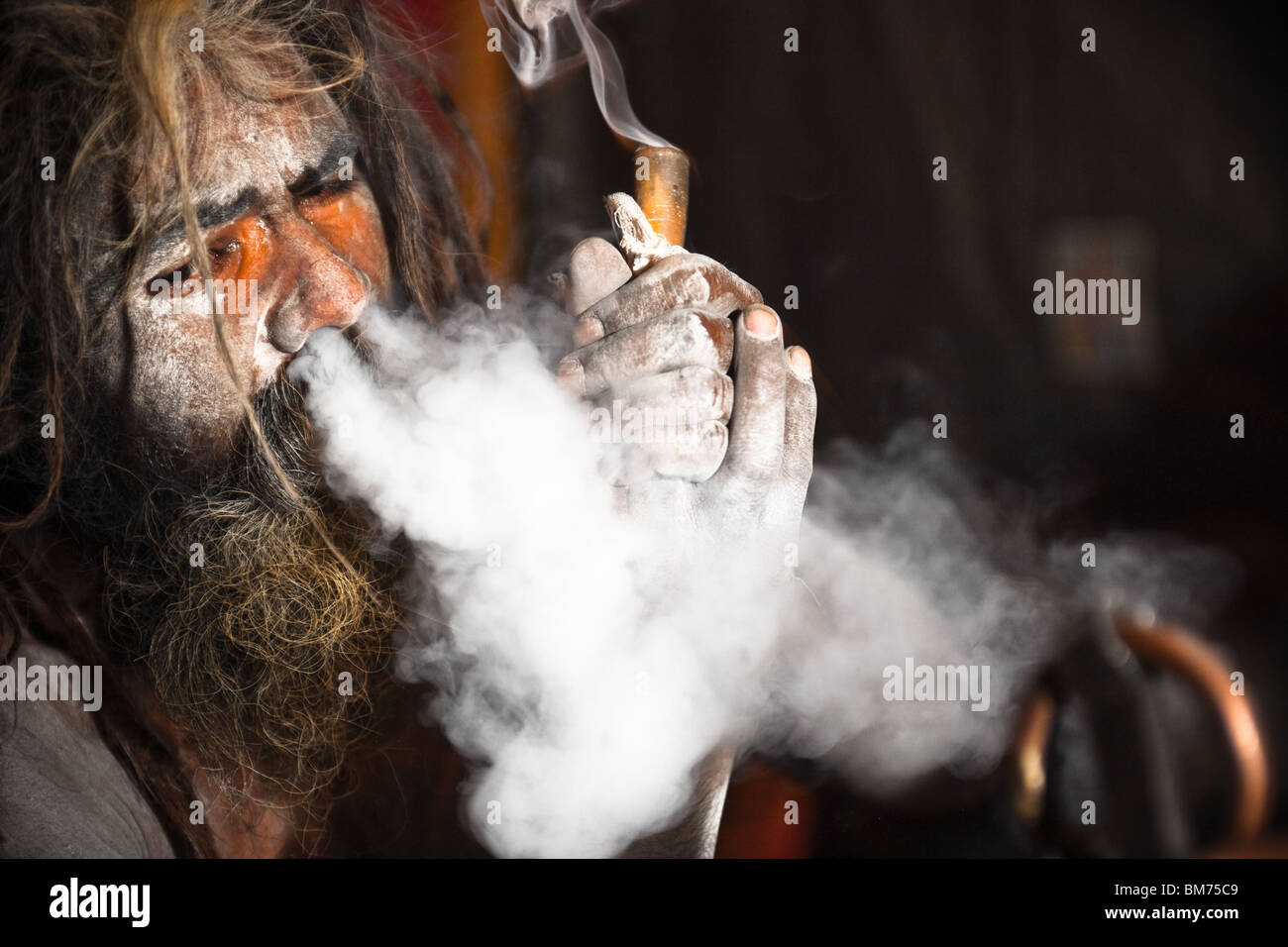 Naga sadus während der haridwar Kumbh mela 2010. Indien Stockbild