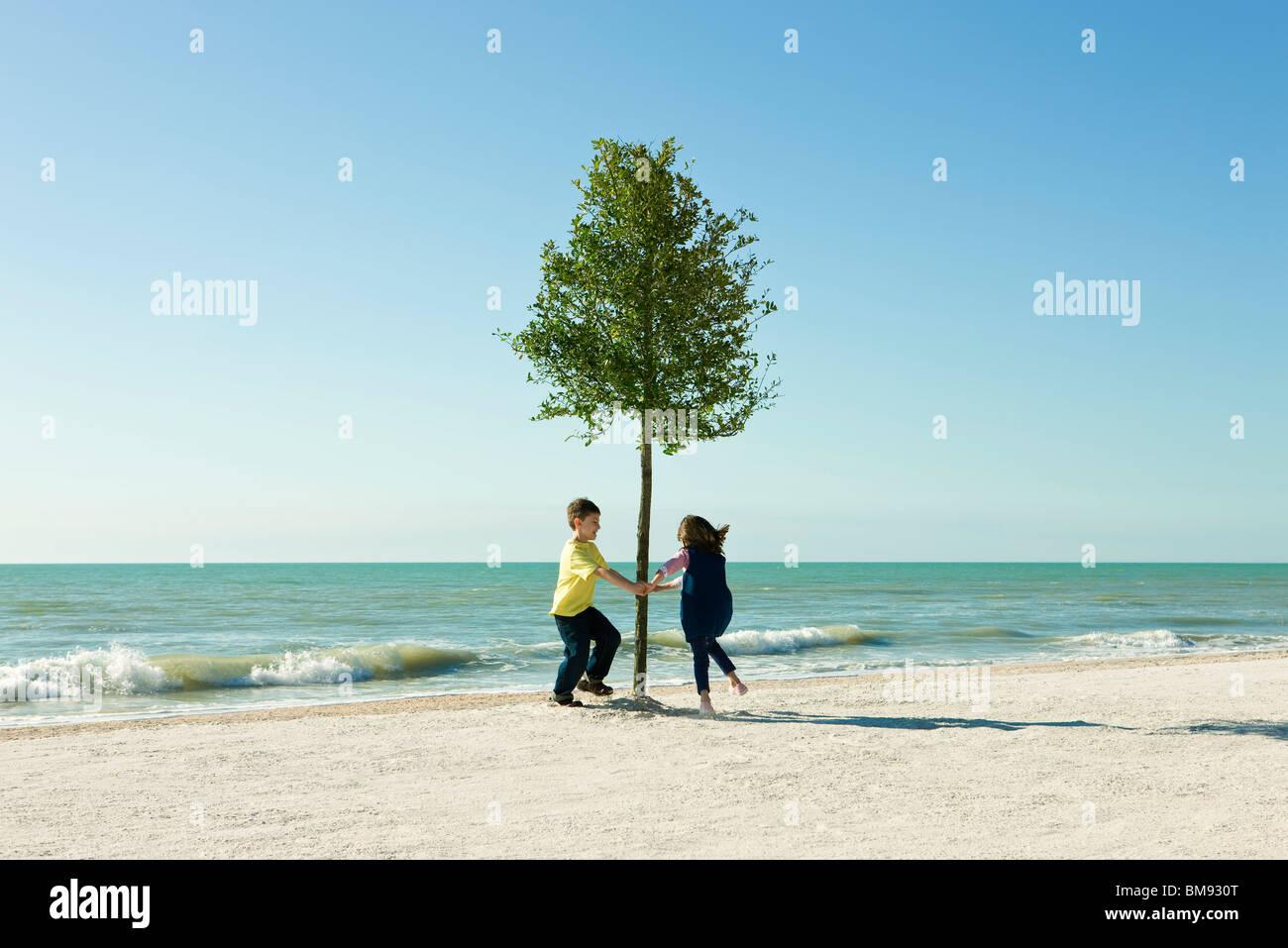 Kinder tanzen um den Baum wächst am Strand Stockfoto, Bild: 29703432 ...