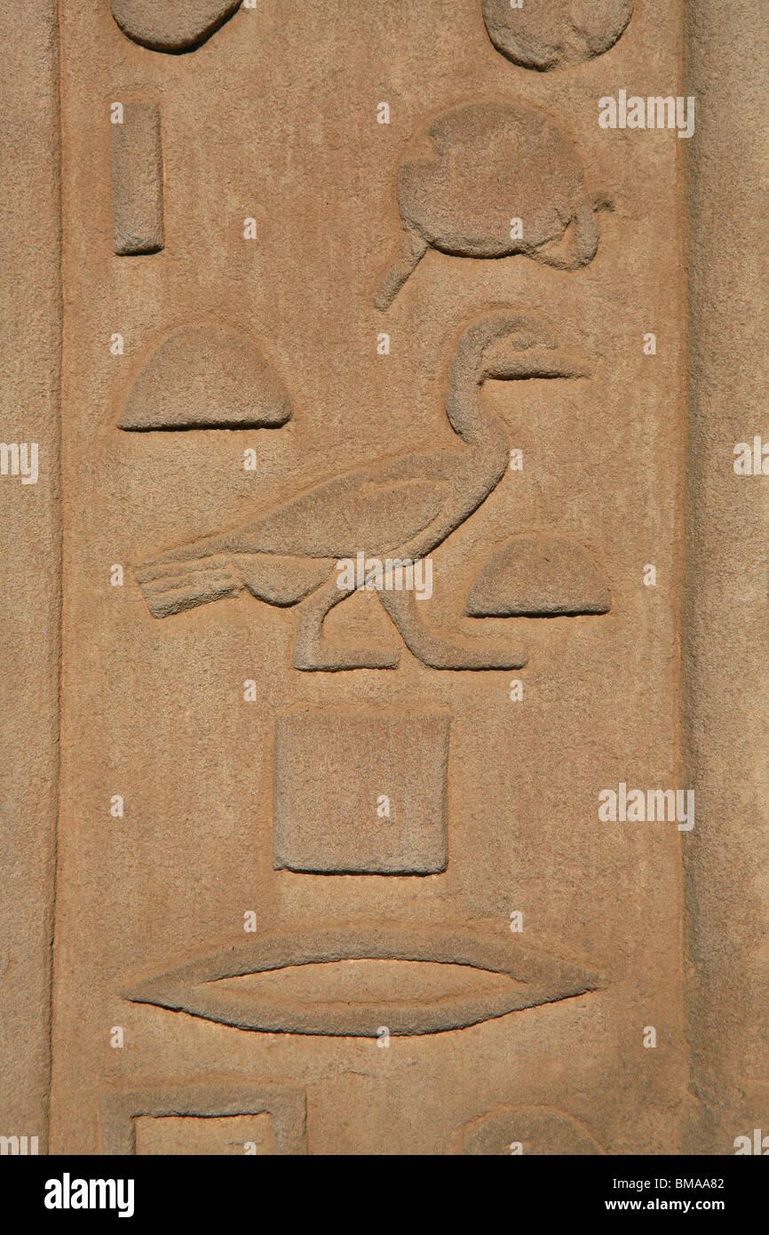 Hieroglyphen, die ein Vogel am Tempel von Kom Ombo (180-47 v. Chr.) im oberen Ägypten Stockbild