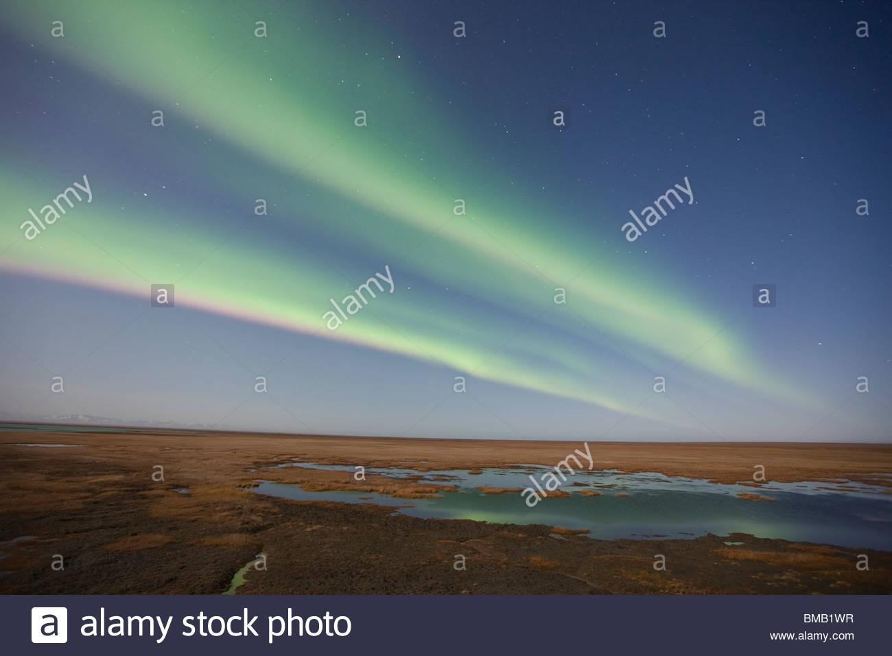 Vorhänge aus farbigen Nordlichter (Aurora Borealis) tanzen am Nachthimmel über der arktischen Tundra auf Stockbild