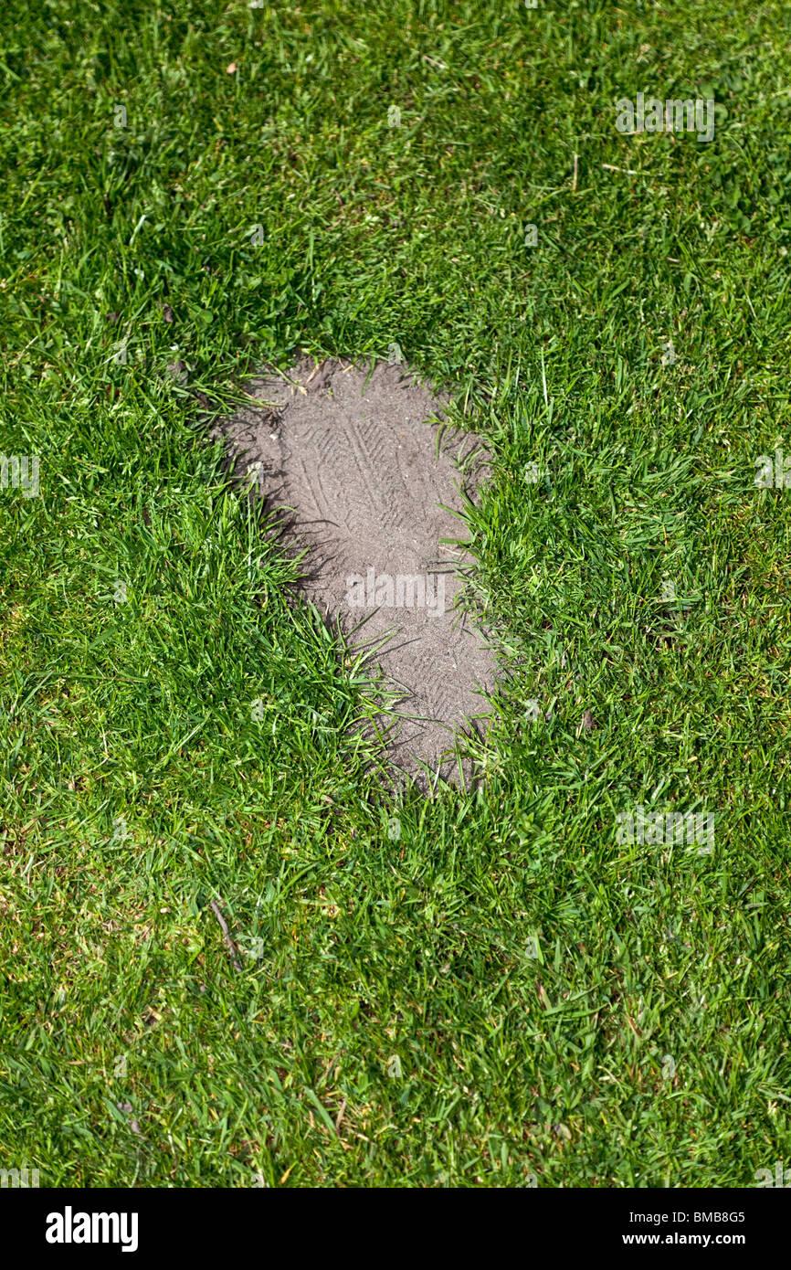 Grass und Fußabdruck, Konzept von Umweltschäden Stockbild