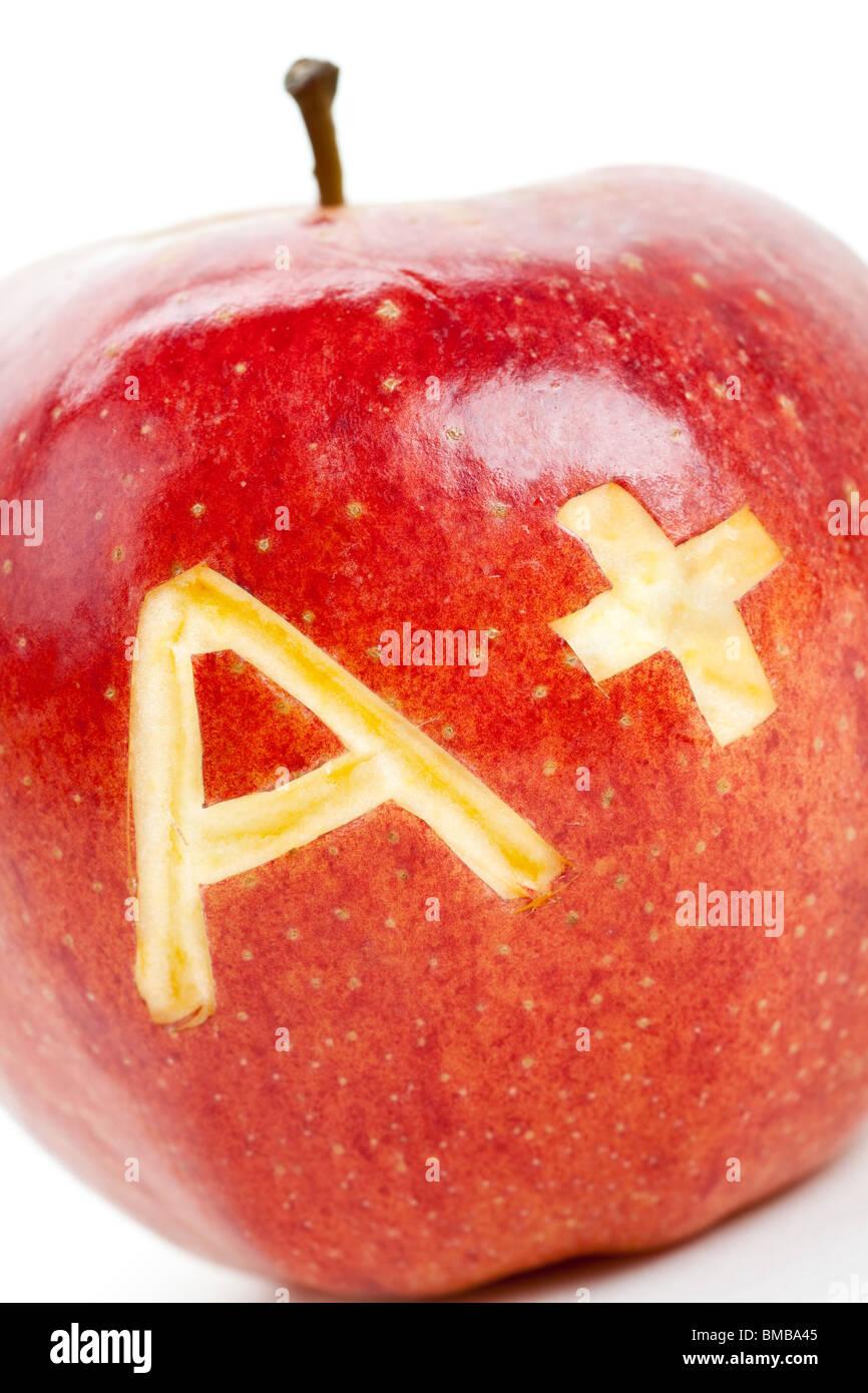 Roter Apfel und ein Pluszeichen, das Konzept des Lernens Stockbild