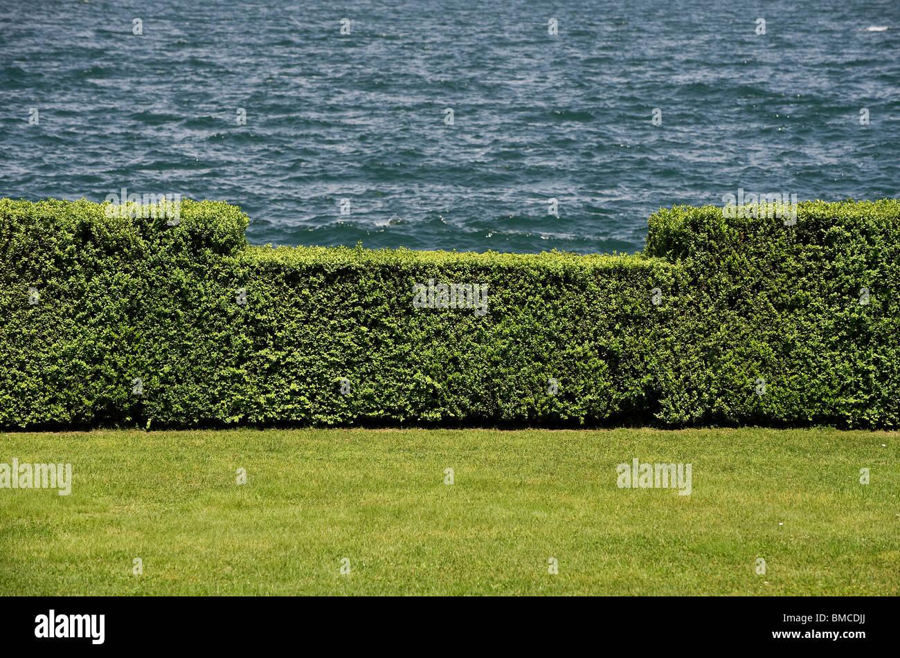 abgeschnitten Garten Hecke Lago Maggiore Italien Stockfoto