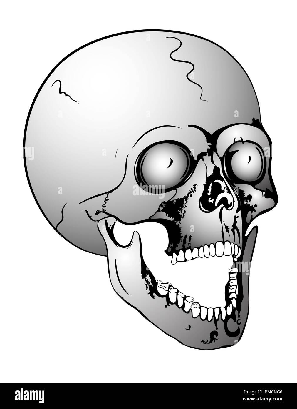 Fantastisch In Ihrem Mund Anatomie Zeitgenössisch - Anatomie Ideen ...