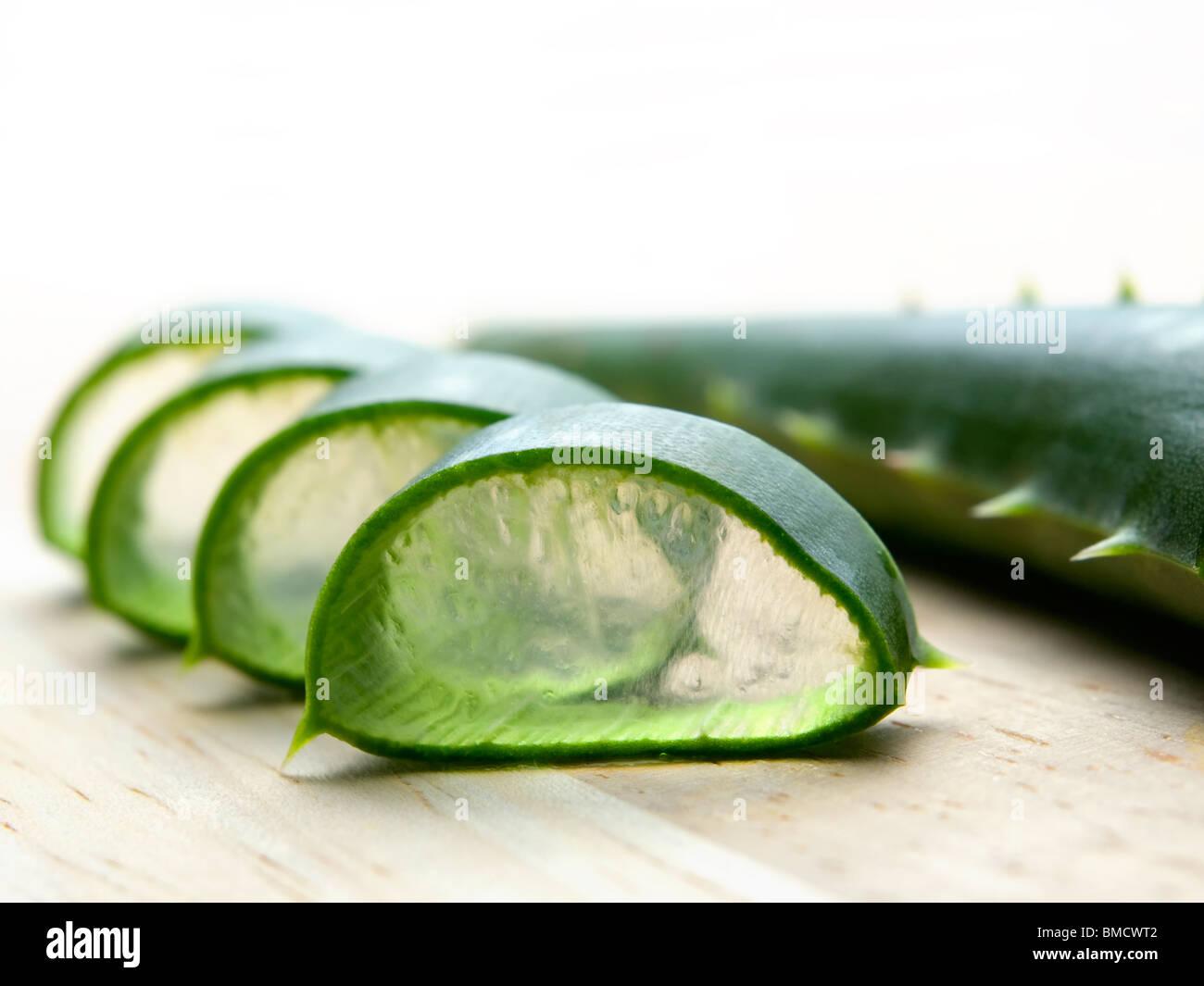 blatt der querschnitt eines kaktus bekannt als aloe vera die in der kr utermedizin ad kosmetik. Black Bedroom Furniture Sets. Home Design Ideas