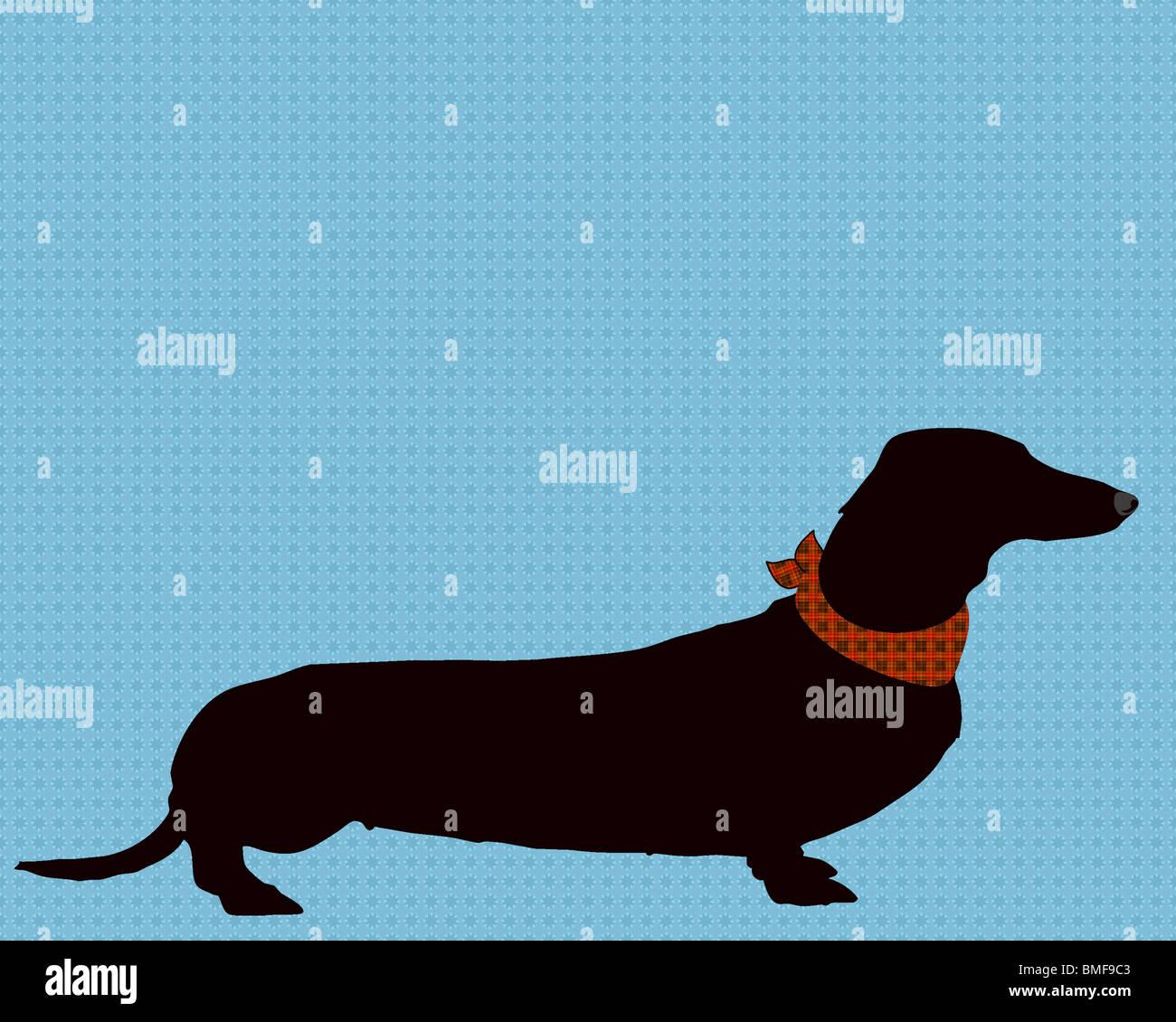 Kunst, Illustration, Print, Dackel, Hund, Haustier, Tier, pet-Liebhaber, Hundeliebhaber, Silhouette, Haustiere, Stockbild