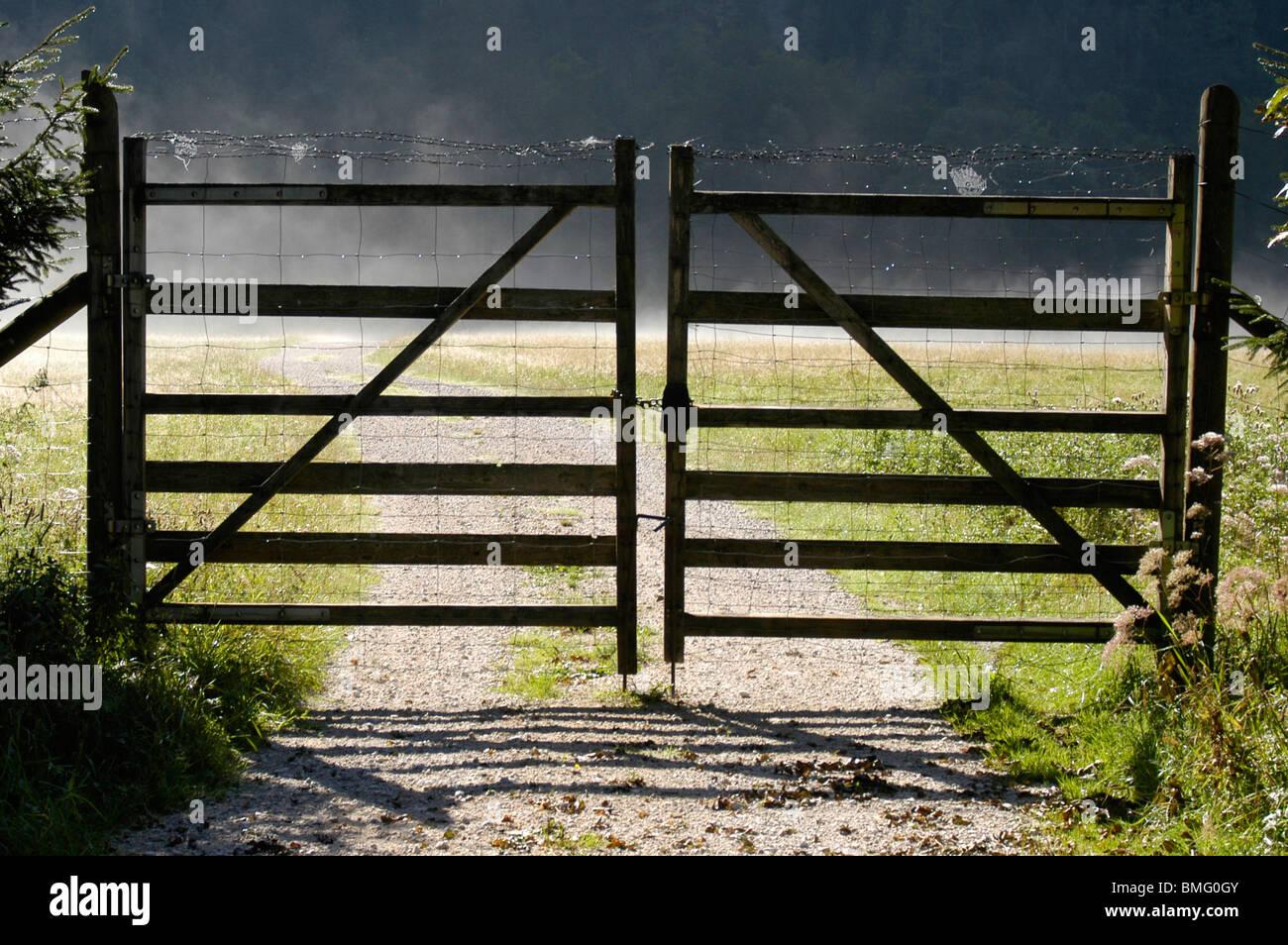 Zaun In Der Morgen Nebel Einfahrt Stockfoto Bild 29855195 Alamy