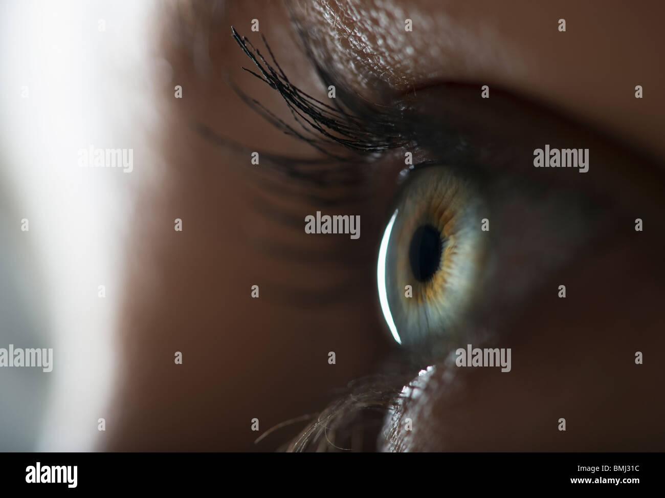 Frau Auge Stockbild