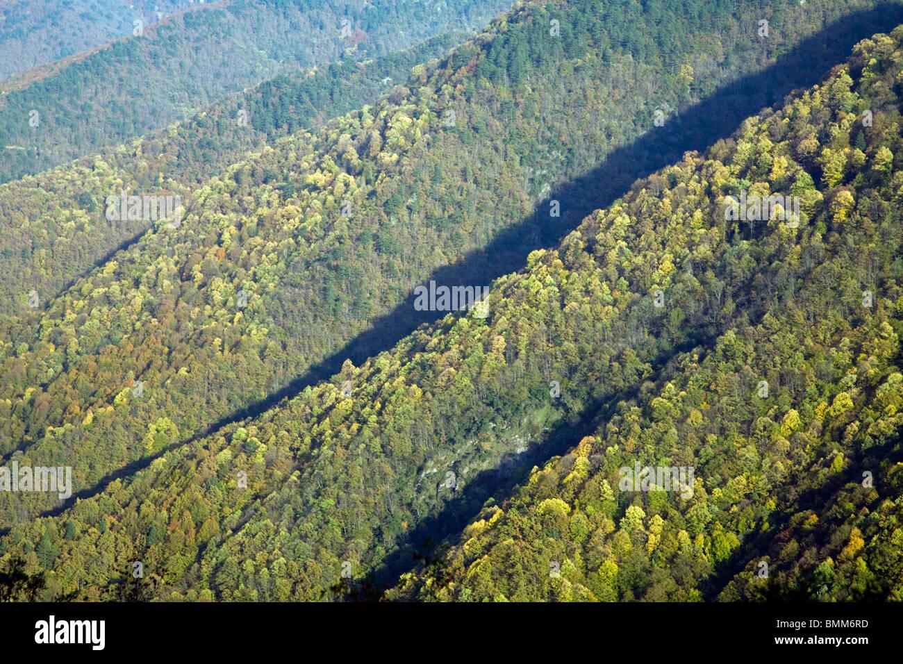 Farben des Herbstes in Filyos Wald, Zonguldak, Türkei Stockfoto ...