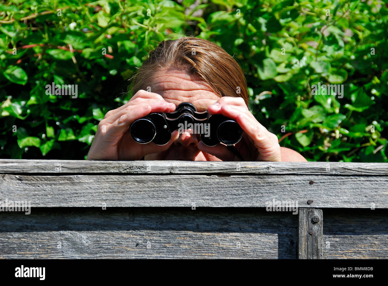 Eine Frau, Fernglas die Spionage auf ihrem Nachbarn mit einem Fernglas Frau, c14488