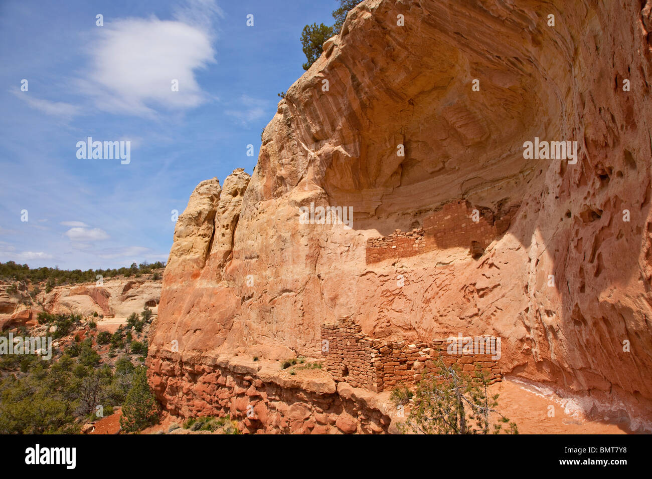 Alten Puebloan Klippe Wohnung entlang Sand Canyon Trail, Schluchten des alten National Monument in der Nähe Stockbild