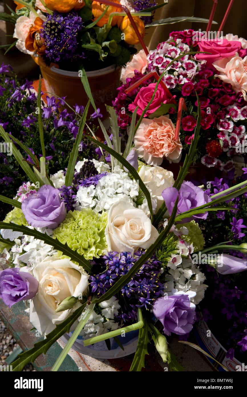 Blumen, Hobbys, Garten, grün, Natur, Stockfoto