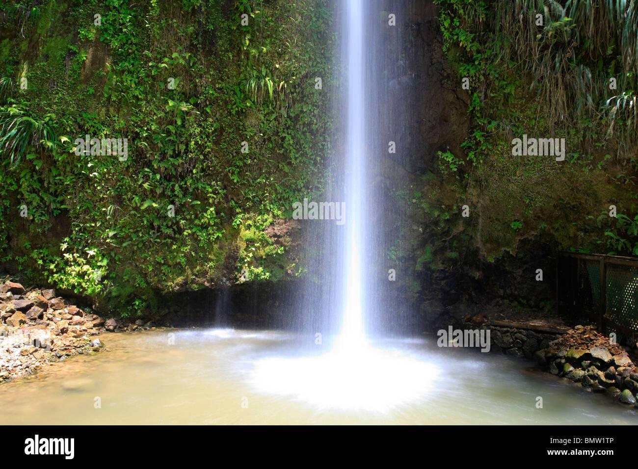 Karibik, St. Lucia, Toraille Wasserfall Stockbild