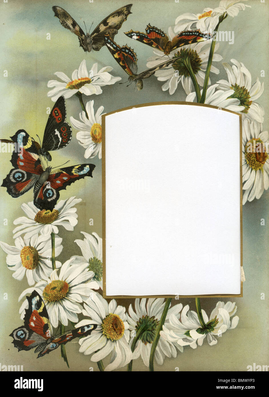 Flower Butterfly Painting Frame Stockfotos & Flower Butterfly ...