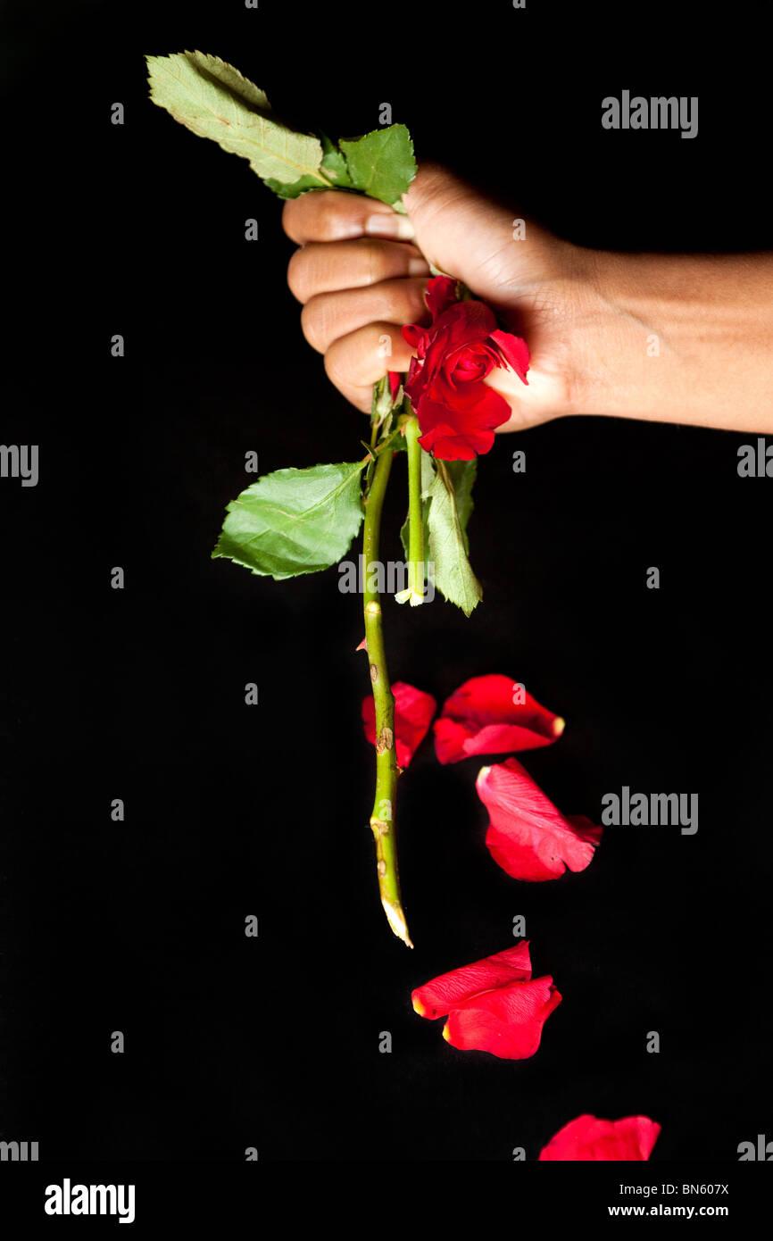 Anti Valentinstag Stockfotos Anti Valentinstag Bilder Alamy