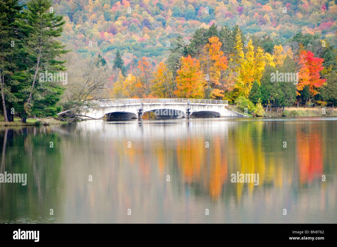 Red House See Allegany State Park New York Stockbild