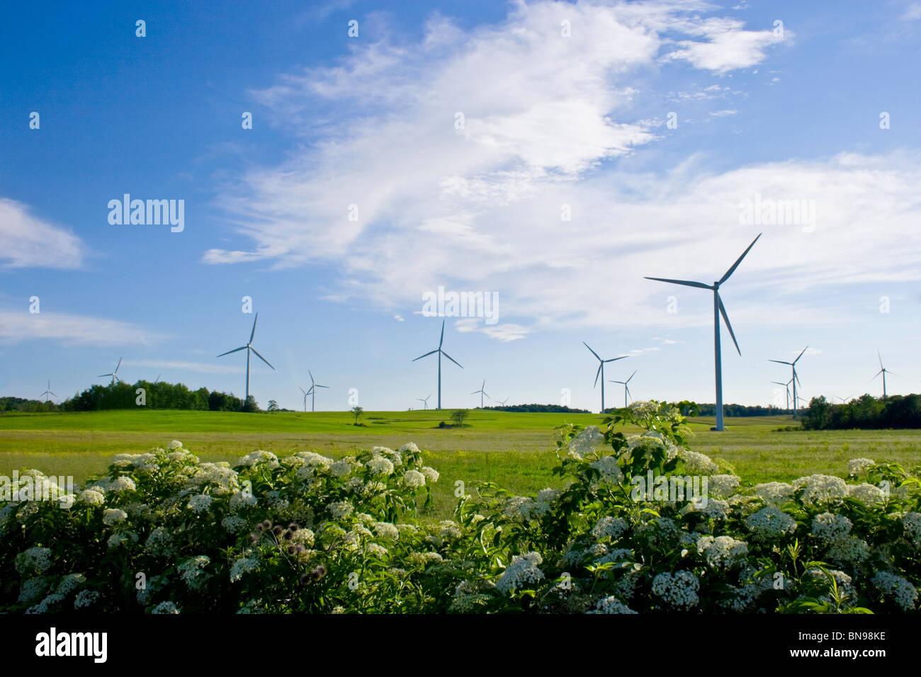Windkraftanlagen im Maple Ridge Windpark Lowville, NY. Einer der größten Windparks in den Vereinigten Stockbild