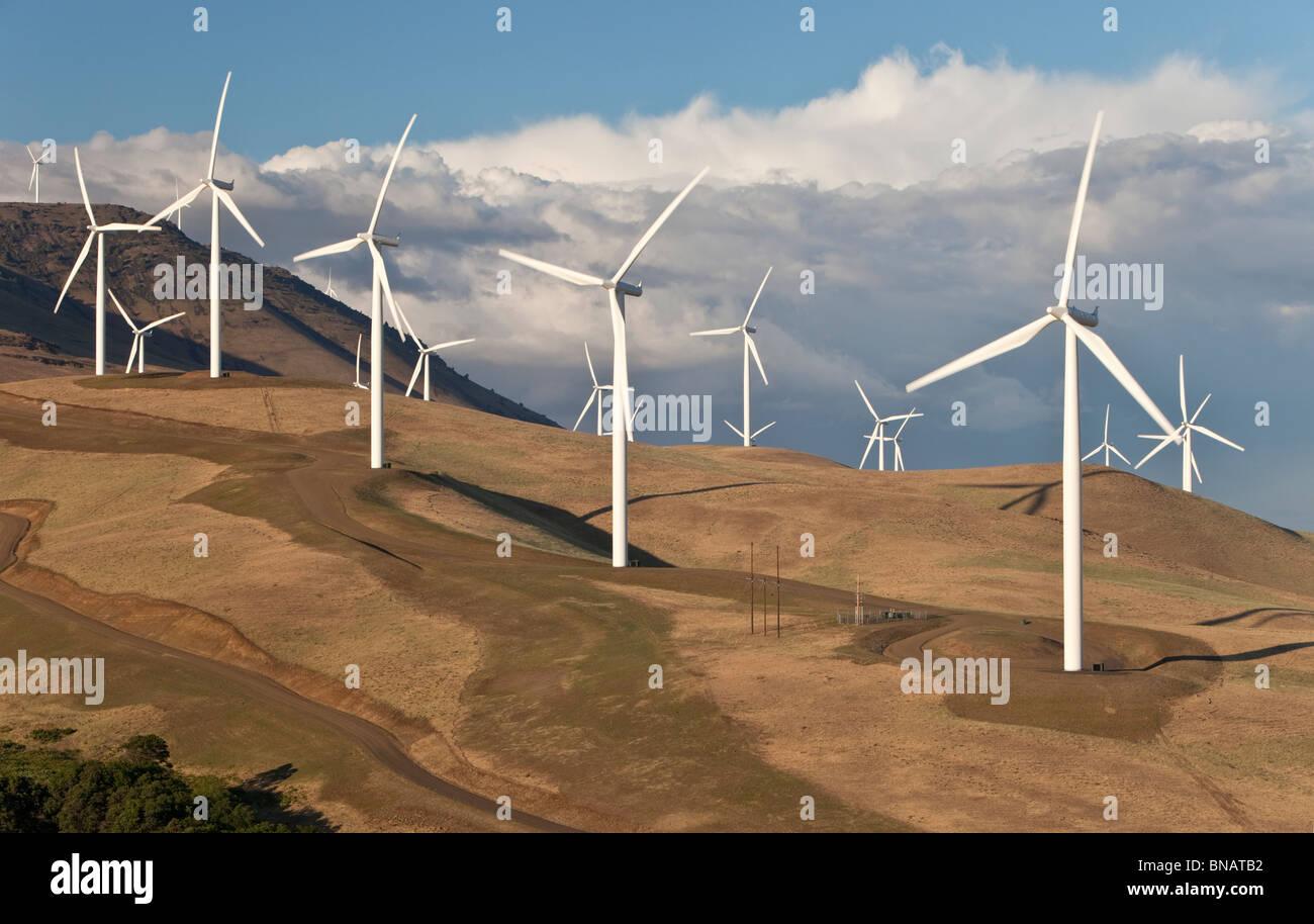Windpark, mit Blick auf Columbia River. Stockbild