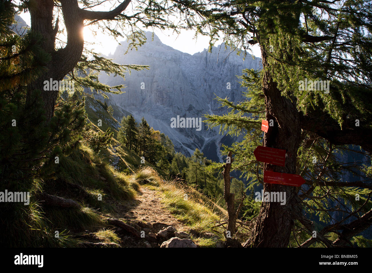 Alpen-Landschaft in Slowenien - Hintergrundbeleuchtung - Julischen Alpen Stockbild