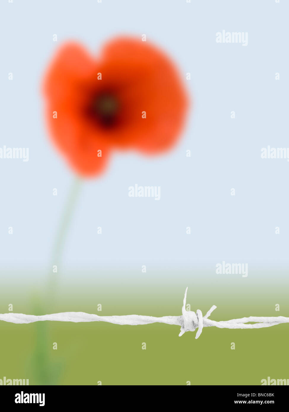 Remembrance Wwii Stockfotos & Remembrance Wwii Bilder - Alamy