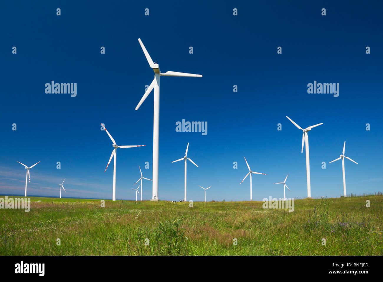 Windkraftanlage, Windpark, Pommern, Polen Stockbild