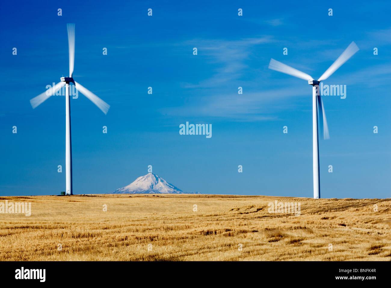 Wind Turbins und Mt. Hood in der Nähe von Wasco, Oregon Stockbild