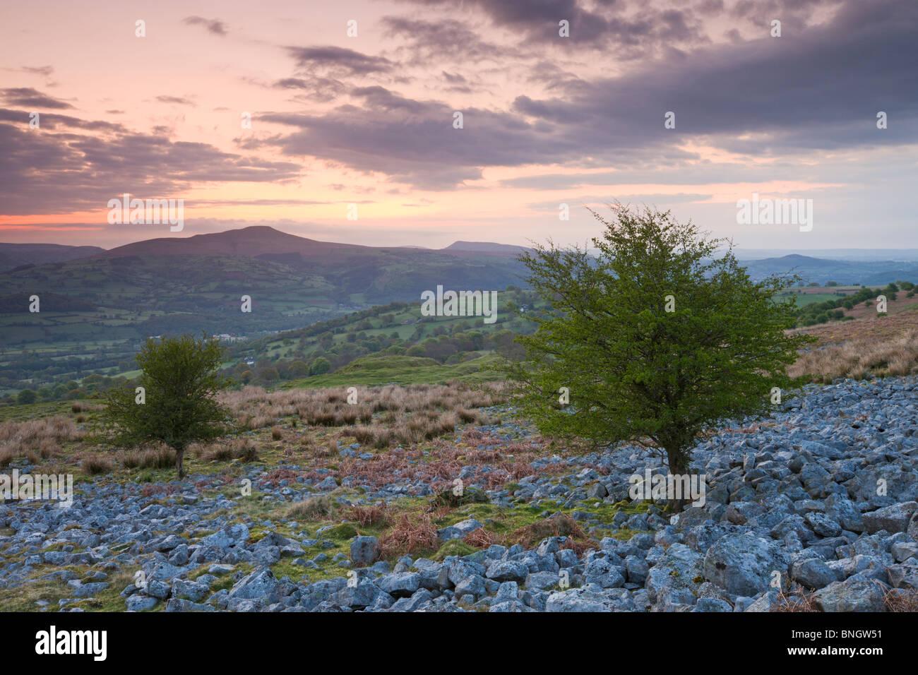 Zuckerhut im Morgengrauen von Llangattock Böschung, Brecon Beacons National Park, Powys, Wales. Stockbild
