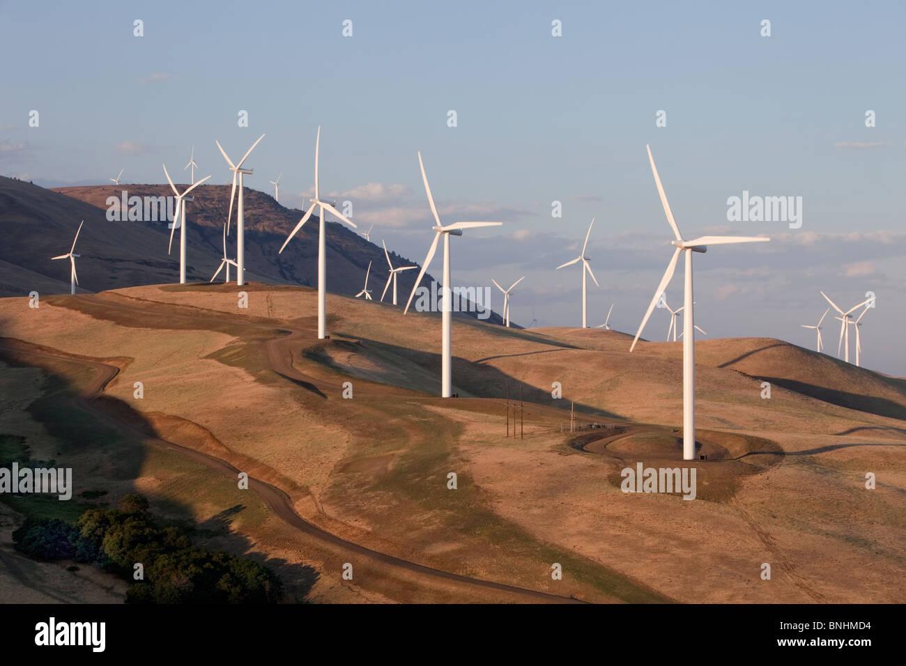 Windpark, einheimische Flora, Stockbild