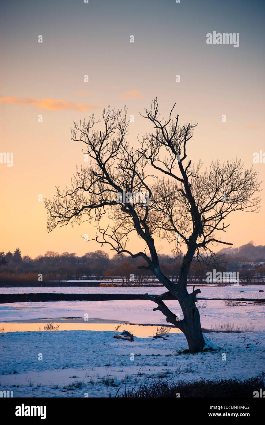 Fluss Towy in der Nähe von Dryslwyn Llandeilo Carmarthenshire Wales im Schnee Stockbild