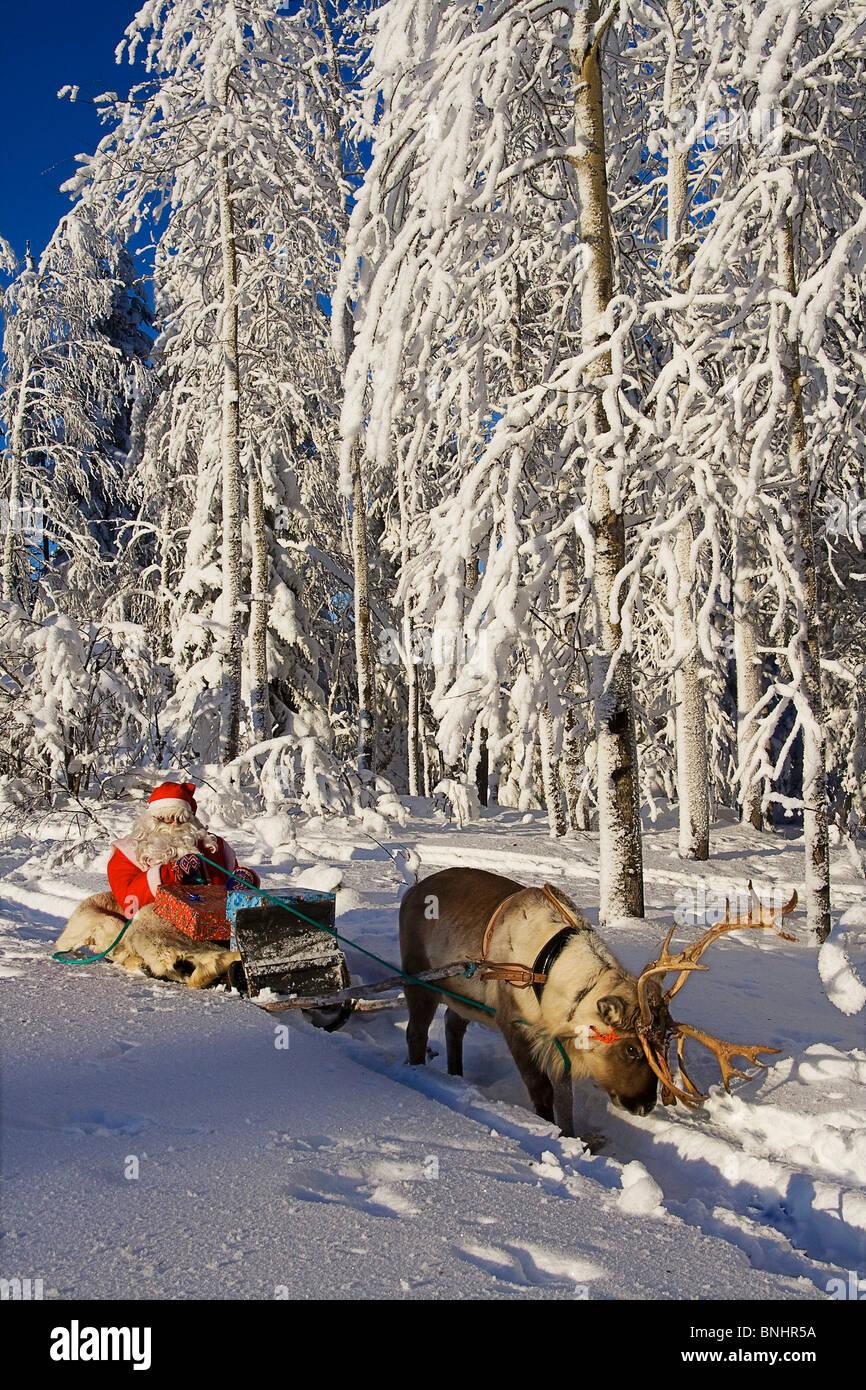 erwachsene tiere weihnachten festliche finnland lappland. Black Bedroom Furniture Sets. Home Design Ideas