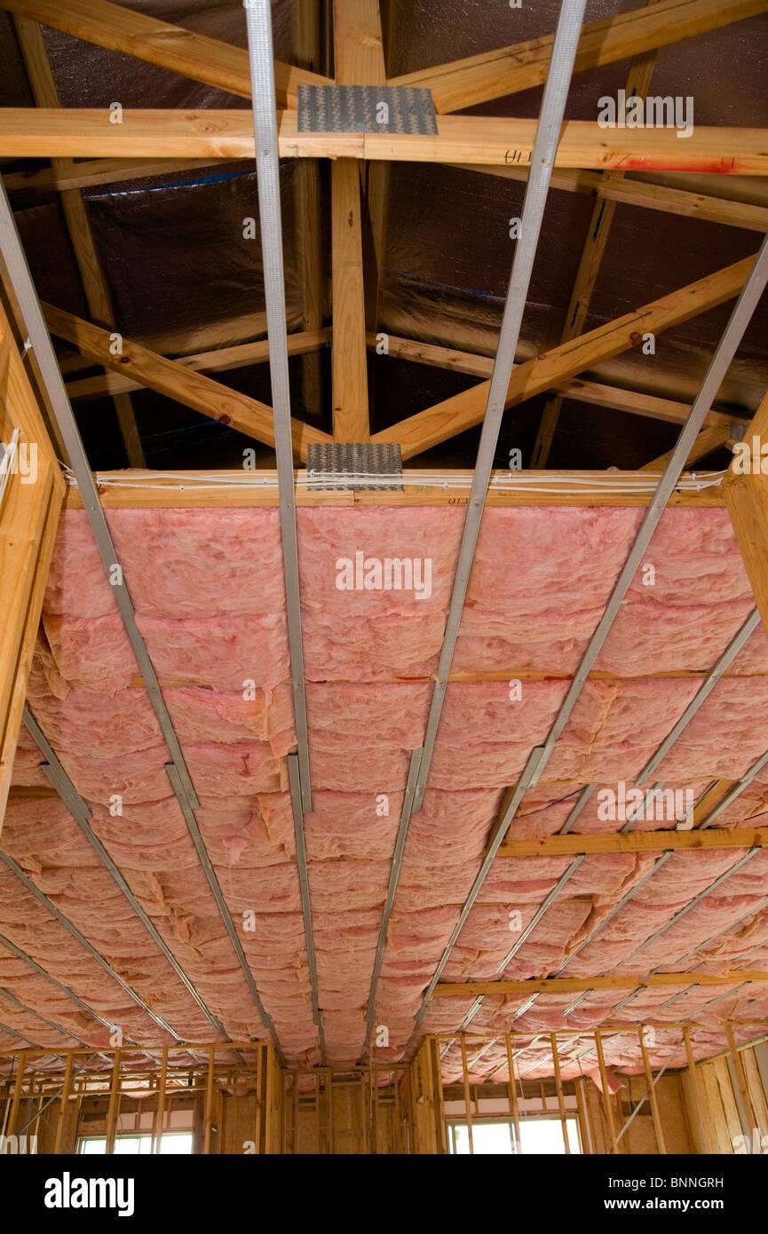 Rosa Fledermäuse Decke Isolierung im neuen Zuhause Stockbild
