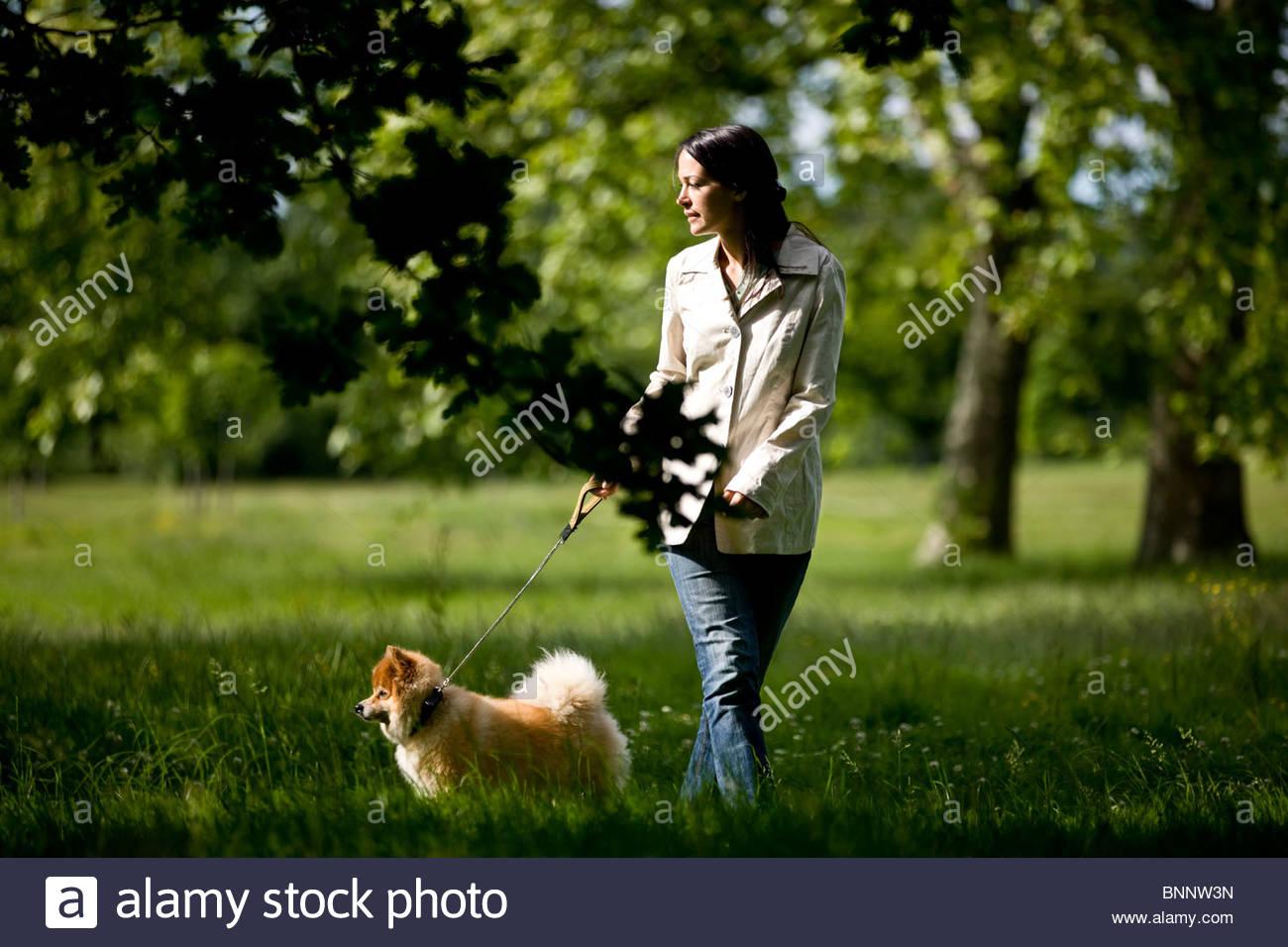 Eine junge Frau, die ihren Hund Stockbild