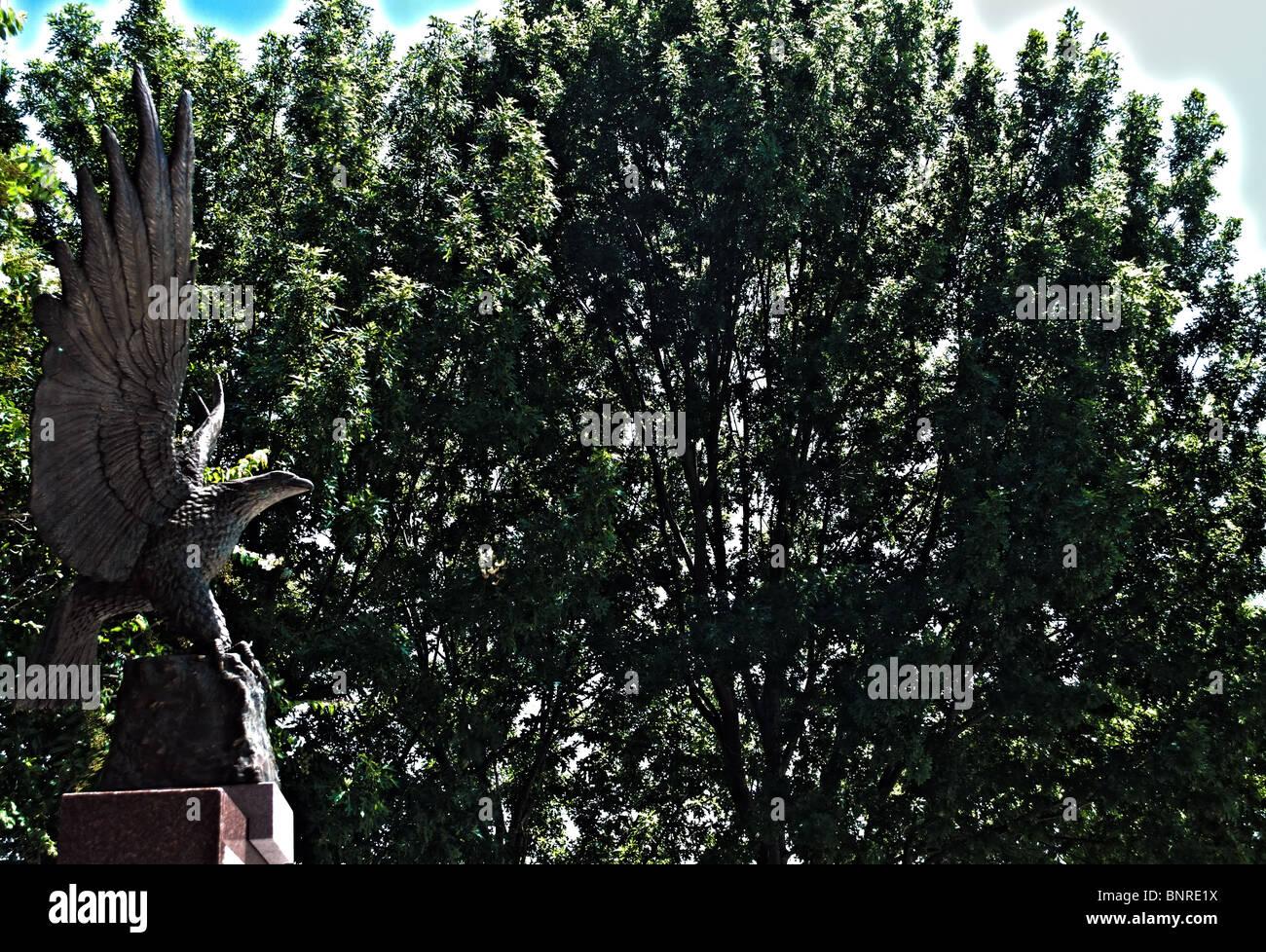 Adler Skulptur befindet sich in Bossier City-Veteran-Denkmal - HDR Stockbild